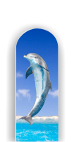 Glass Nail File: Dolphin